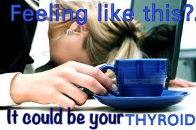 thyroid tired2
