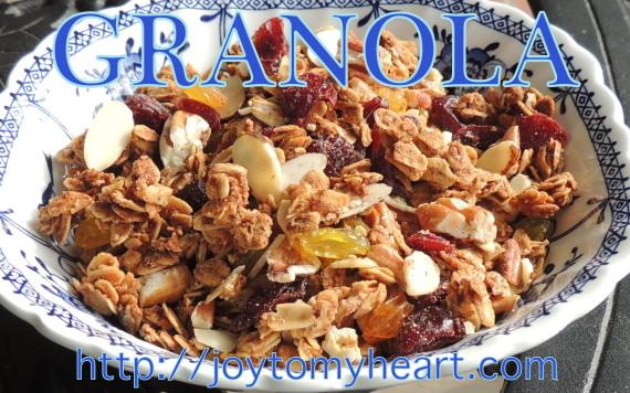 granola bowl2