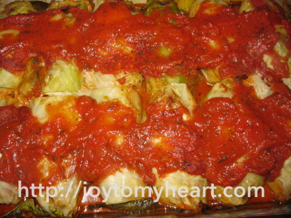 cabbage rolls sauced