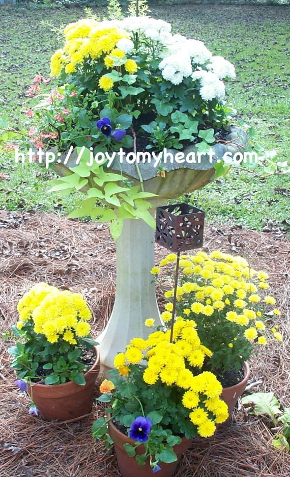 Fall Birdbath planter