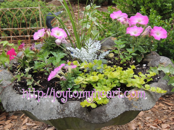 Repurposed Birdbath planter4