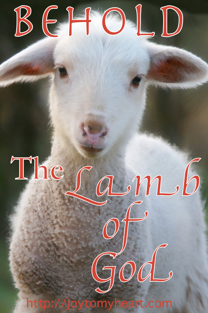 Behold The Lamb Of God. God's Plan Of Redemption For The