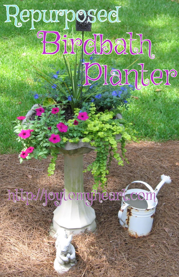repurposed birdbath planter
