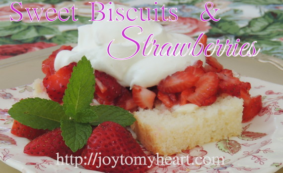 Sweet BIscuits and Strawberries 12