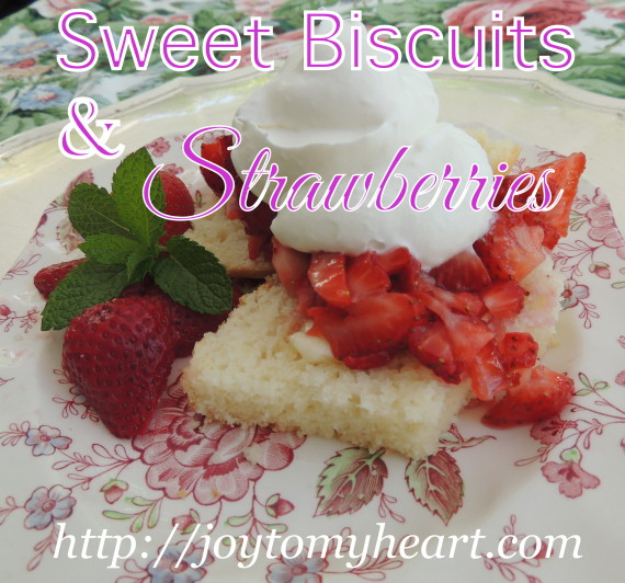 Sweet Biscuits and strawberries1