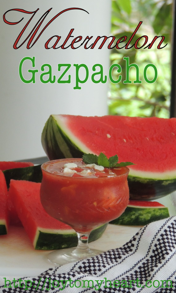 watermelo gazpacho tall