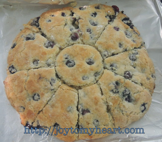 blueberry scones baked