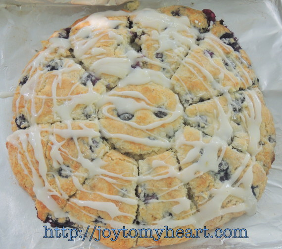 blueberry scones iced