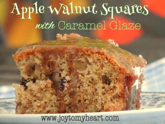 apple walnut squares2