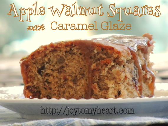 apple walnut squares3