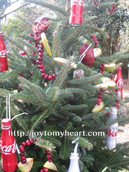 birdseed coke ornaments