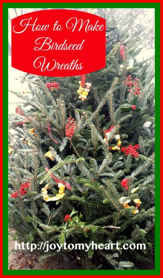 birdseed wreaths