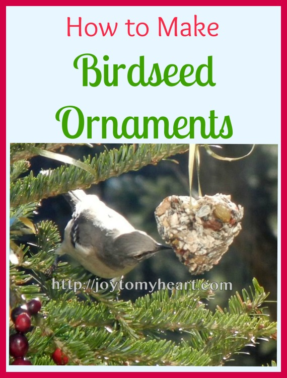 how to make Birdseed Ornamants
