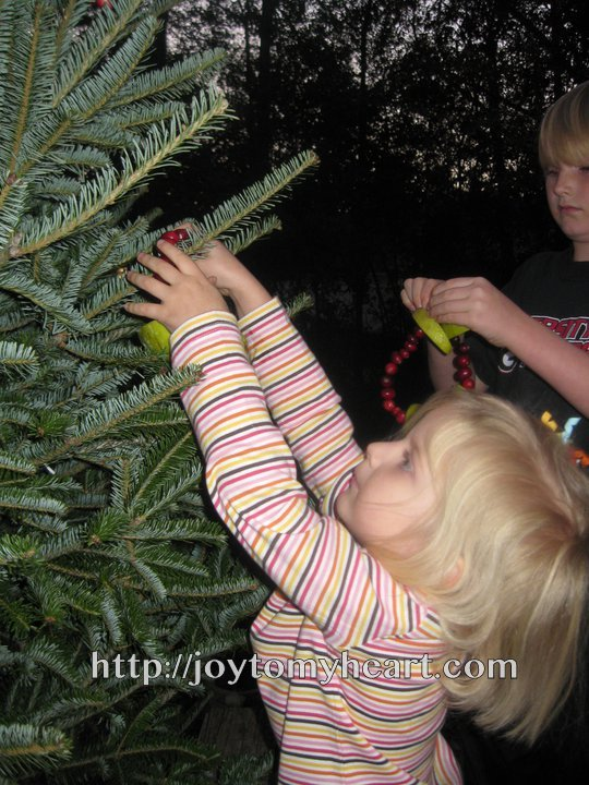 stella decorating tree