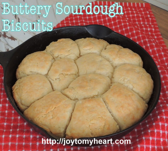 buttery sourdough biscuits2