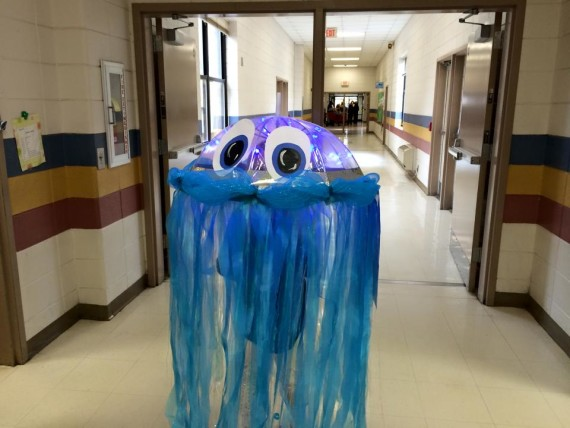 stella jellyfish in hallway