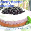 Blueberry Mousse Cheesecake2