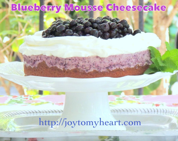 Blueberry Mousse Cheesecake7