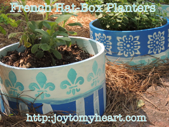 French Hat Box Planters