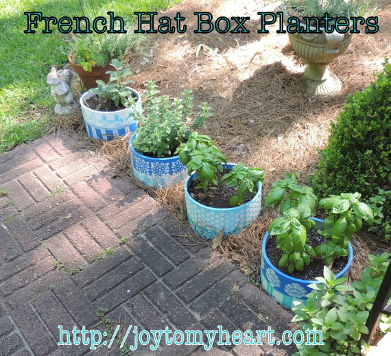french hat box planters6